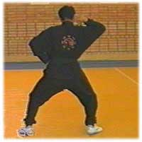 The technique of bajiquan